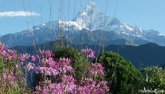 Mt Fishatal seen from Pokhara in 7 day Nepal tour.