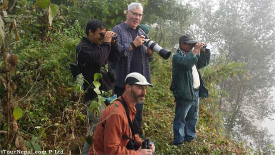 Birding, bird watching tour in Chitwan national park.