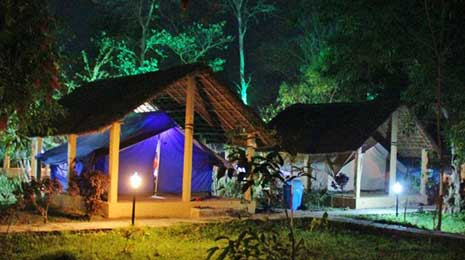 tented camp accommodation in Kohi Tappu