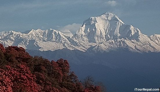 Dhaulagiri (8,167m) seen from Pun Hill